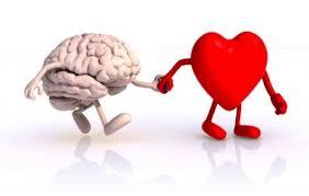 coeur cerveau